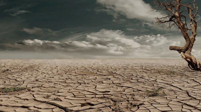 Fluchtursache: Klimawandel